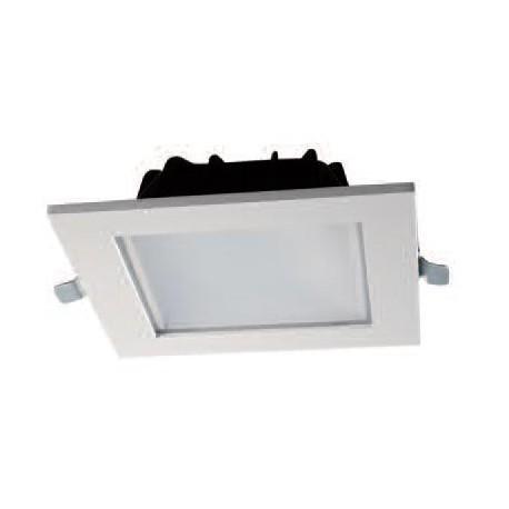 XF8031L 20W LED